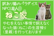 NPO法人「ねこ家」